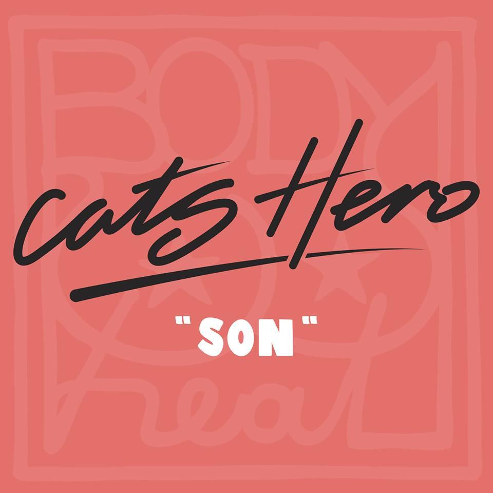 Cats-Hero